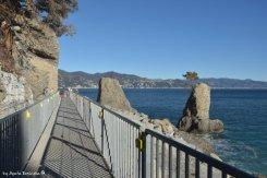 Portofino - Santa Margherita road