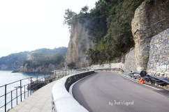 state of the road to Portofino 2020