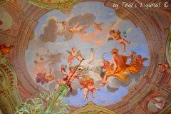 ceiling Villa Durazzo Centurione