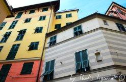 windows of Arenzano