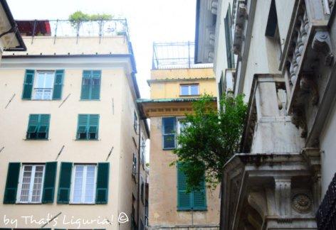 Genoa and pomegranate palace