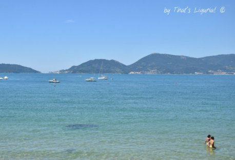 island around Lerici