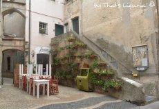 historical centre Cogoleto