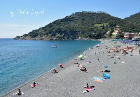 beach in Bonassola