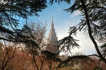 NTT building Tokyo, through the trees