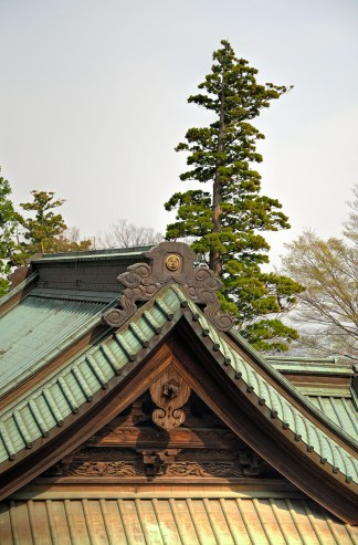 Wood and Copper Roof