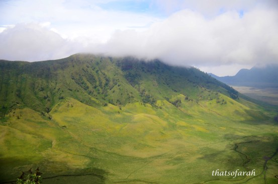 Bromo Savannah from Ngadas