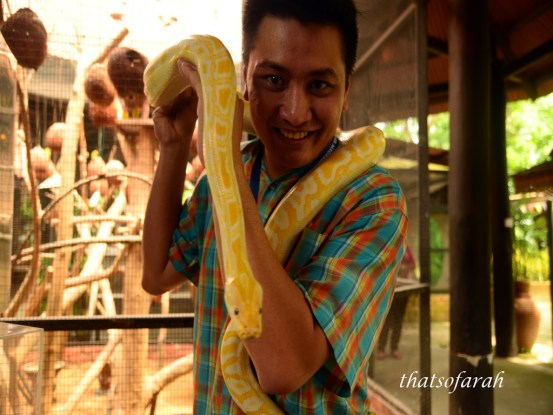 Butterfly & Reptile Sanctuary 1