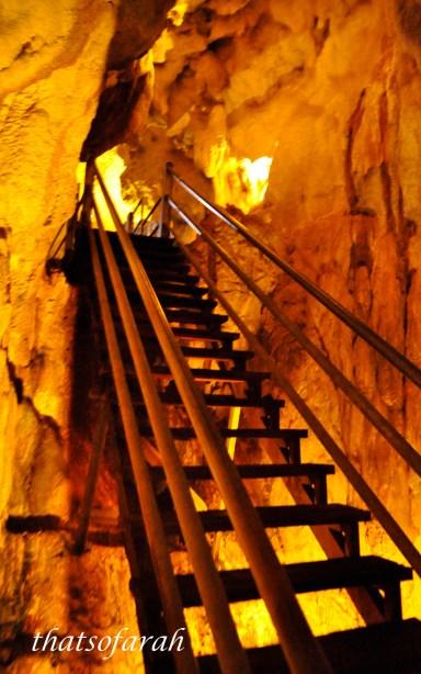 Wind Cave Mulu
