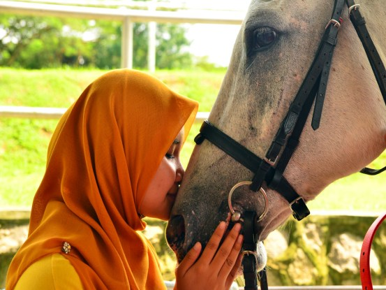 Human-Horse Relationship