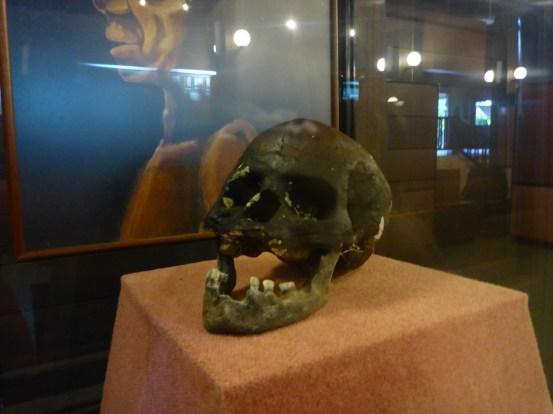 NIah Deep Skull
