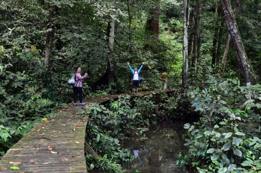 Madu Trail