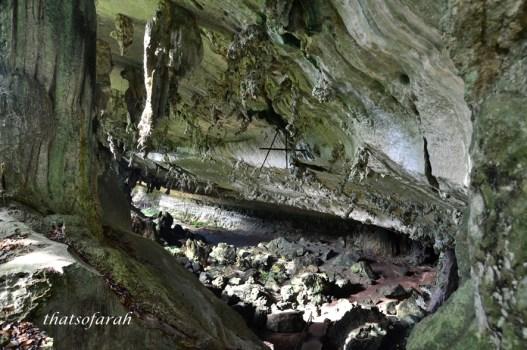 Niah Caves