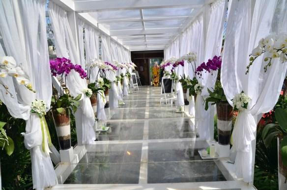 Celebrate Love Wedding