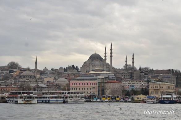 Istanbul from Bosphorus Straits