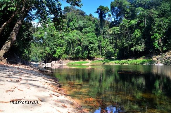 Sungai Petang, Kenyir
