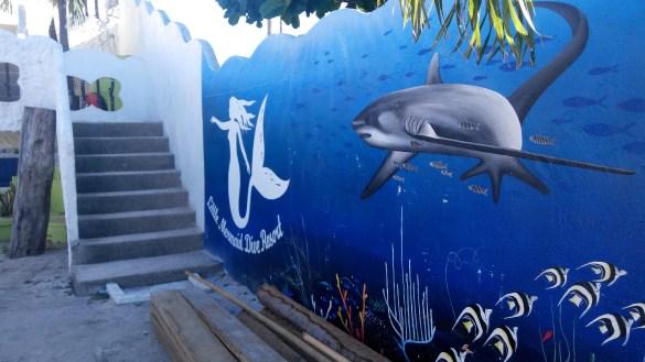 Little Mermaid Dive Resort, Malapascua Island