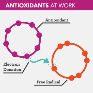 What Do Antioxidants Do