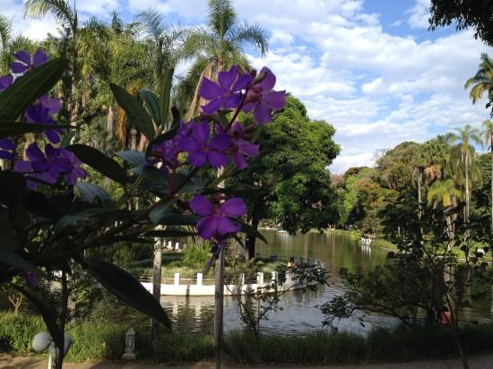 belo_horizonte_parque_municipal