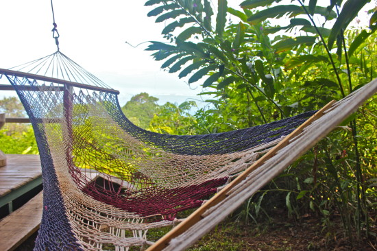 Medium image of the hammock at the relax  munal area
