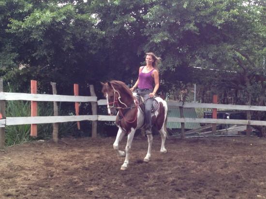 horsetrekmonteverde_costarica_horseriding_me