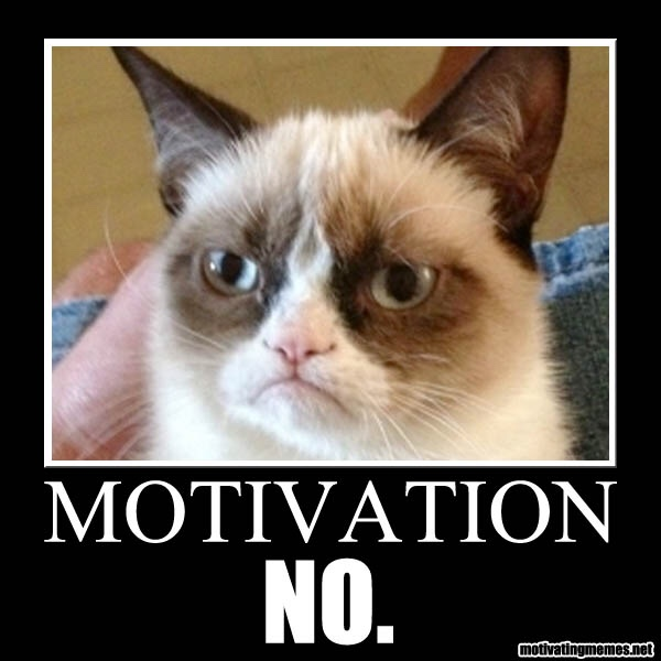 Grumpy cat no motivation