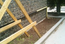 The bed at the front, weened and dug over
