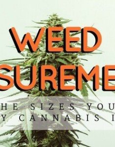 Weed measurements and prices know what to expect from your dispensary also in rh thcoverdose