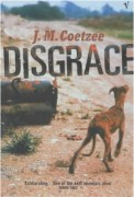 Disgrace, book