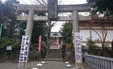 青渭神社 どんど焼き