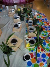 summer_planters