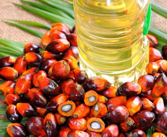 Palm Oil Memebership