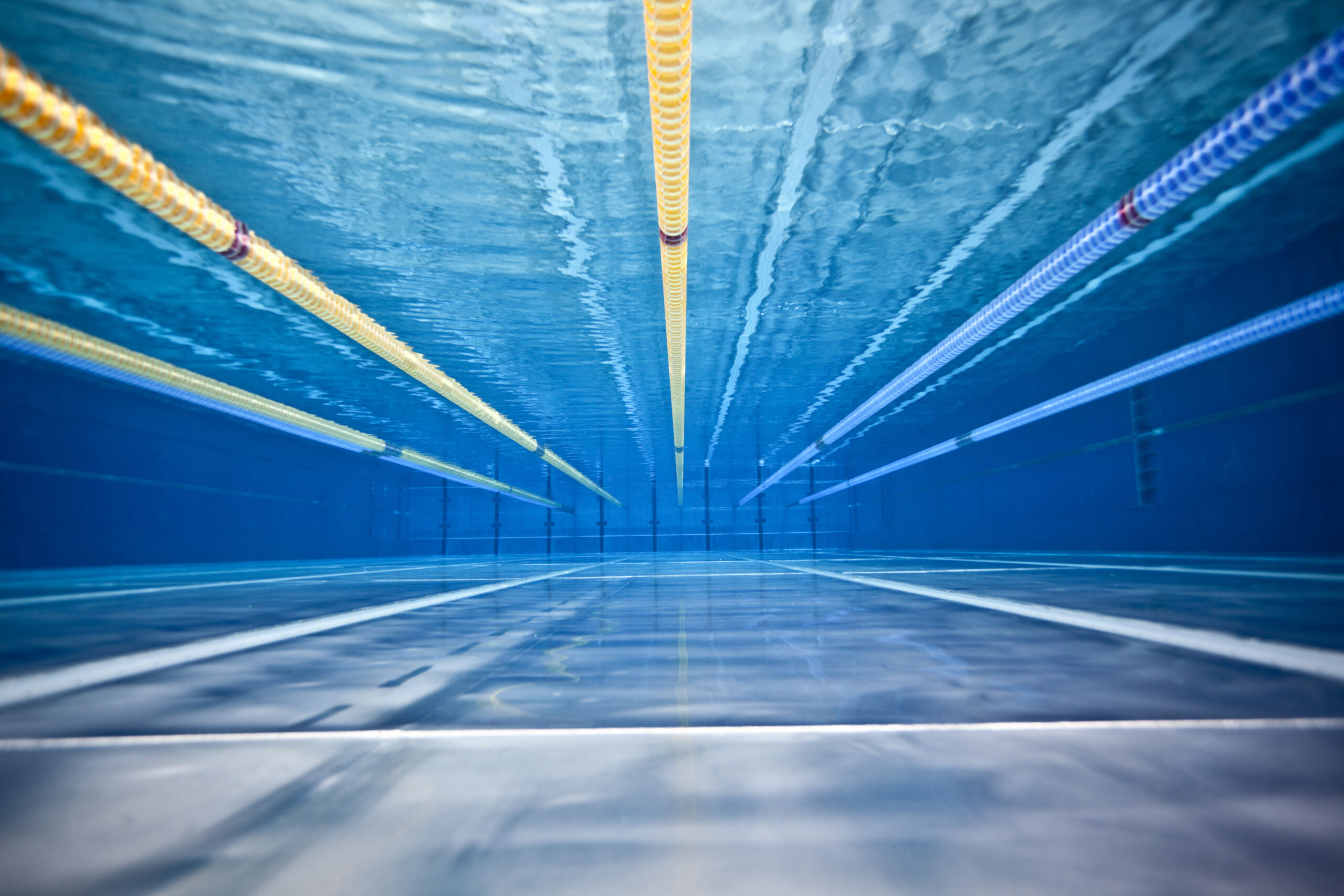 Principles —  Swim Lanes for Strategy and Culture