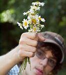 "Jane Stauss ""Flowers to Mom"""
