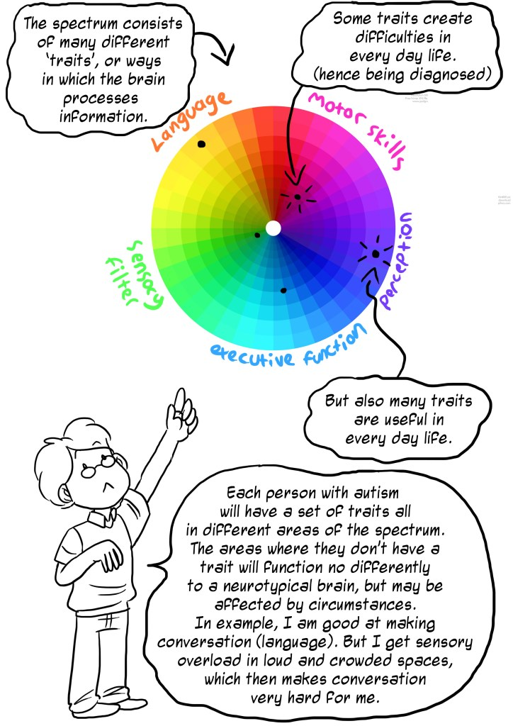 The spectrum consists of many different traits, or ways in which the brain processes information. Some traits create difficulties in every day life. (hence being diagnosed). But also many traits anre useful in every day life. Each person with autism will have a set of traits all in different areas of the spectrum. The areas where they don't have a trait will function no differently to a neurotypical brain, but may be affected by circumstances. In example, I am good at making conversation (language). Bit I get sensory overload in loud and crowded spaces which makes conversation very hard for me.