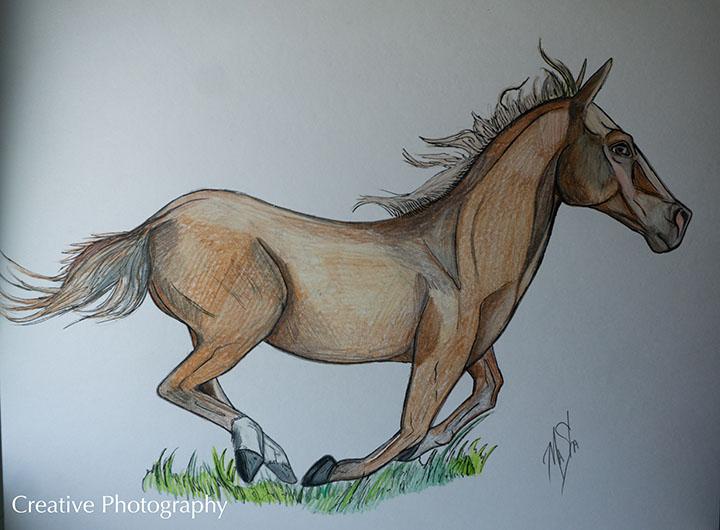 "Masha Gregory ""Horse Running"""