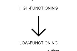 low and high functioning autism