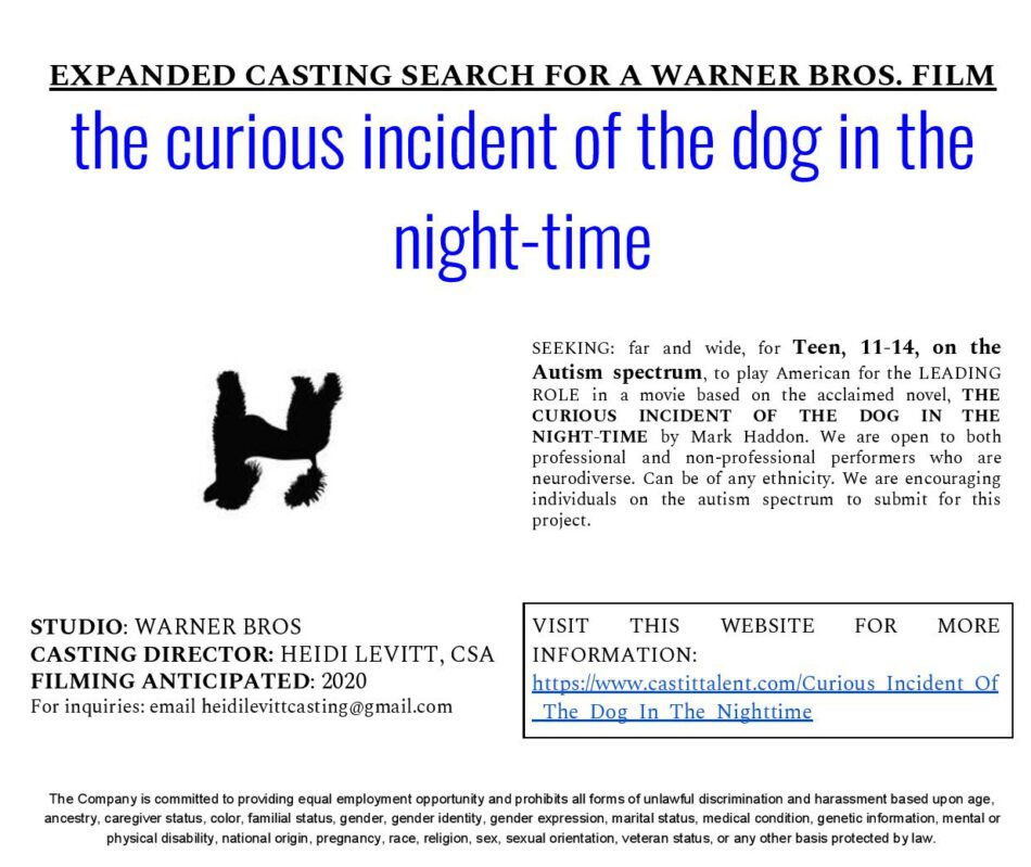 Casting Call Curious Incident of the Dog in the Night-time
