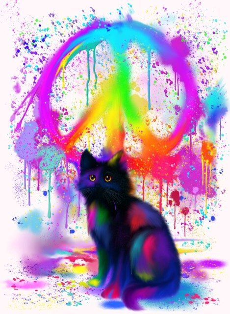 """Nick Gustafson """"Black Cat with Shades of Pink"""""""