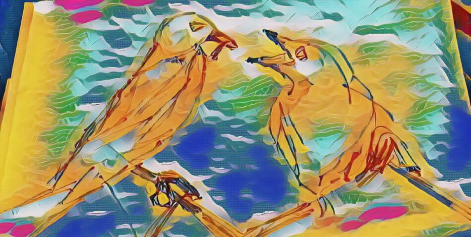 2 Birds 3
