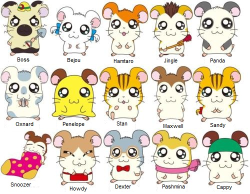hamtaro_whats_there_name__by_luckrabbitreflex-d5iura3