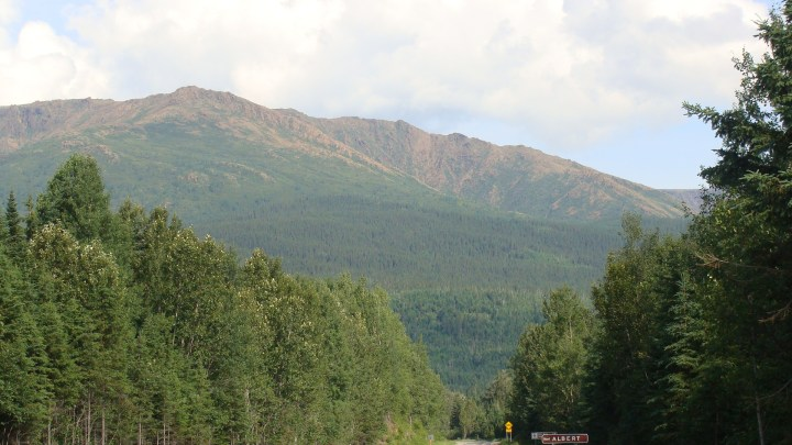 Mont_Albert.jpg
