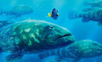 finding-dory-huge-fish
