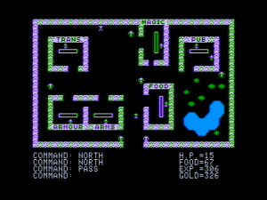 265329-ultima-apple-ii-screenshot-castle