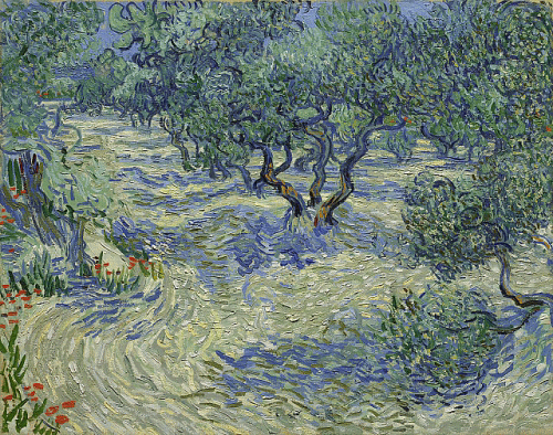 Painting of olive trees in a field