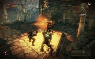 807363-the-witcher-2-assassins-of-kings-windows-screenshot-fighting