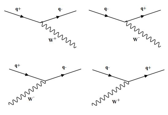 W-q vertices