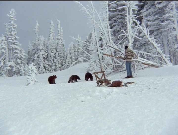 The-Bears-and-I-1974-3