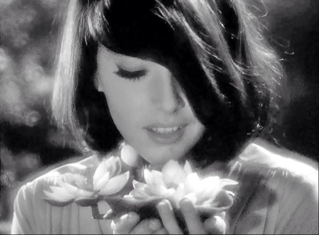 a woman stares at a large flower, from The Outer Limits episode Zzzzz
