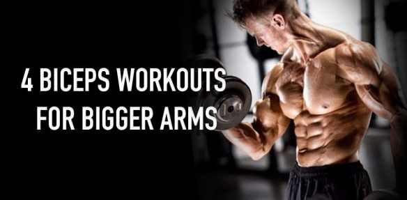 4 biceps workouts for bigger arms